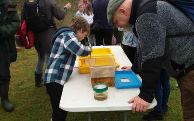 Pond Dipping 28th April 2018